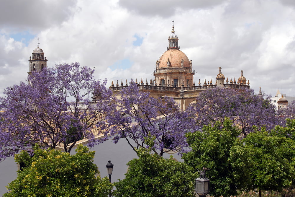 View on cupola of The Cathedral of San Salvador in Jerez de la Frontera, Spain